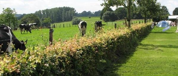 Waalheimerfarm