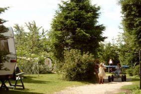 Foto in Odoornerveen
