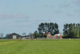 Stal de Pagter en Minicamping Hoogelande