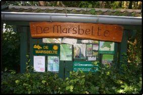 Natuurkampeerterrein De Marsbelte